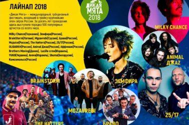 Дикая мята музыкальный фестиваль